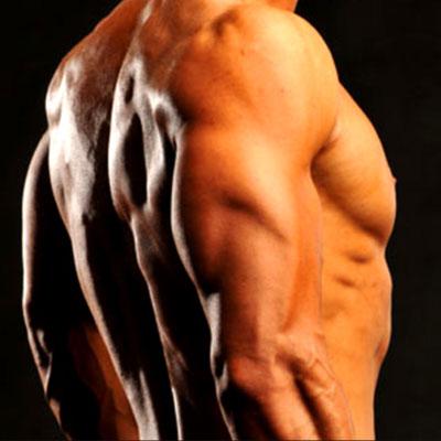 Triceps-styrketræningsøvelse