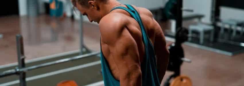 Triceps øvelser dips